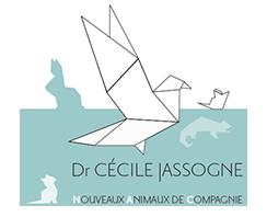Vétérinaire Cécile JASSOGNE