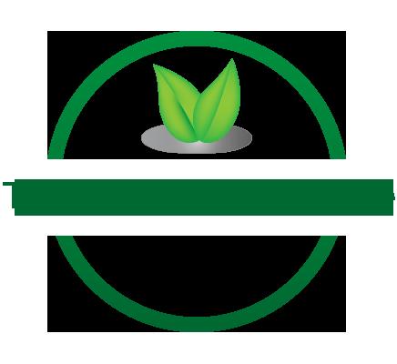 Techniques Élagage Mulhouse