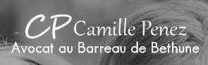 Camille Penez